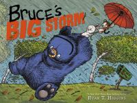 Cover image for Bruce's big storm