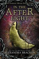 Cover image for In the afterlight
