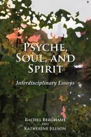 Cover image for Psyche, soul, and spirit  interdisciplinary essays