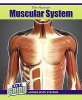 Cover image for The human muscular system