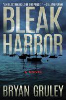 Cover image for Bleak harbor