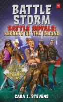 Cover image for Battle storm : an unofficial Fortnite novel