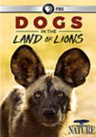 Cover image for Dogs in the land of lions