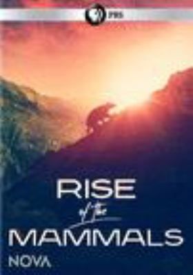 Cover image for Rise of the mammals