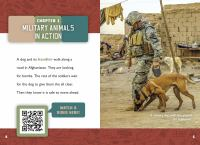 Cover image for Military animals