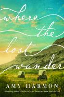 Cover image for Where the lost wander