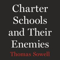 Cover image for Charter schools and their enemies