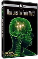 Cover image for Nova Science Now How does the brain work?