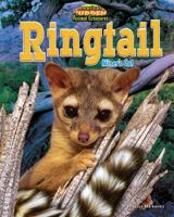 Cover image for Ringtail : miner's cat