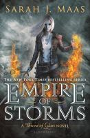 Cover image for Empire of storms