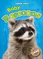 Cover image for Baby raccoons