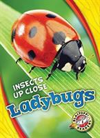 Cover image for Ladybugs