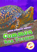 Cover image for Common box turtles