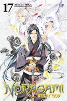 Cover image for Noragami, stray god. 17
