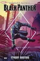 Cover image for Marvel action. Black Panther. Stormy weather. Book 1