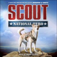 Cover image for National hero
