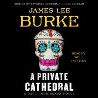 Cover image for A private cathedral