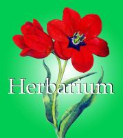 Cover image for Herbarium