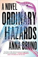 Cover image for Ordinary hazards