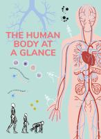 Cover image for The human body at a glance