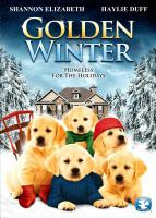 Cover image for Golden winter homeless for the holidays