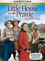 Cover image for Little house on the prairie. Season six