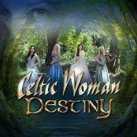 Cover image for Destiny