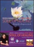 Cover image for Soul of healing