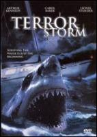 Cover image for Terror storm