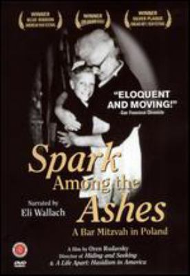 Cover image for Spark among the ashes a bar mitzvah in Poland