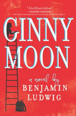 Ginny Moon image cover