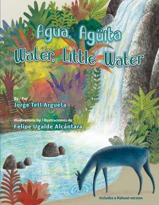 Agua, Agüita = Water, Little Water = At Achichipiga At image cover