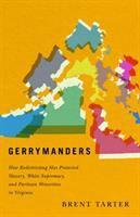 Gerrymanders : how redistricting has protected slavery, White supremacy, and partisan minorities in Virginia