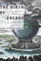 Birth of energy : fossil fuels, thermodynamics, and the politics of work