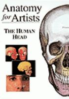 Anatomy for artists. The human head.