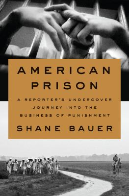 American prison : a reporter's undercover journey into the business of punishment book cover