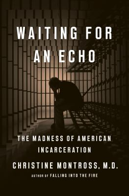 Waiting for an echo : the madness of American incarceration book cover