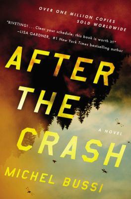 After the crash : a novel