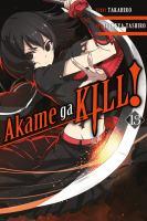 Akame ga kill! 13