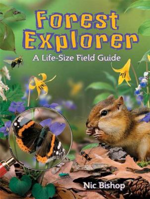 Forest explorer : a life-size field guide