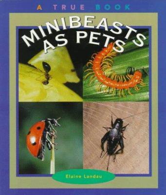 Minibeasts As Pets