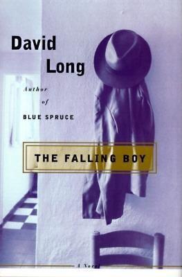 The falling boy : a novel