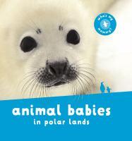 Animal babies in polar lands.