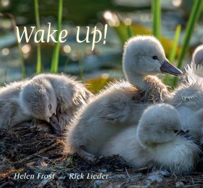Wake up! :