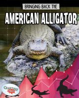 Bringing back the American alligator