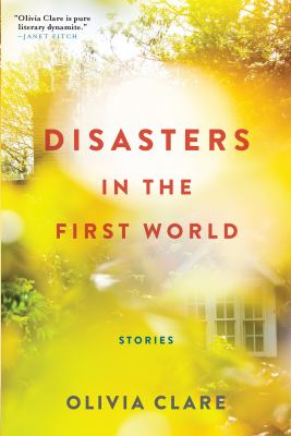 Disasters in the first world : stories