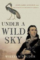 Under a Wild Sky