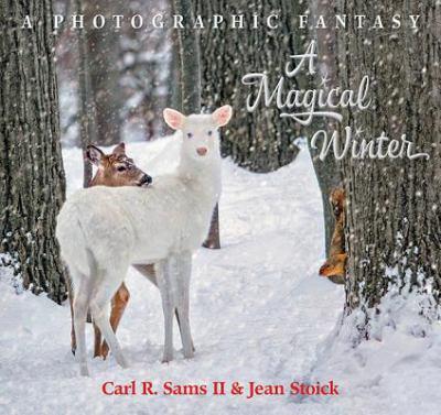 A magical winter :