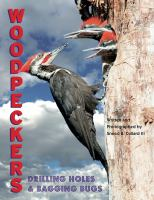 Woodpeckers : drilling holes and bagging bugs