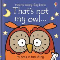 That's not my owl... : its beak is too shiny